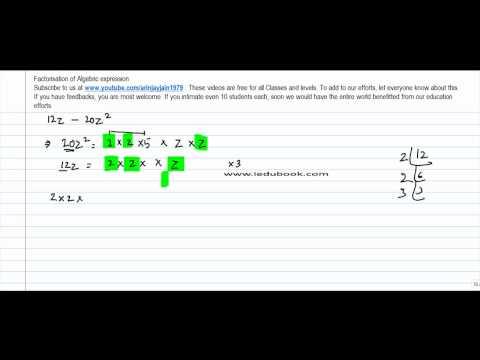 345.Class VIII   Factorisation of Algebric expression through common factors   Problem 2A