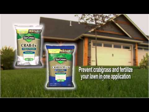Step 1: Weed Control - Sta-Green Lawn Care Program