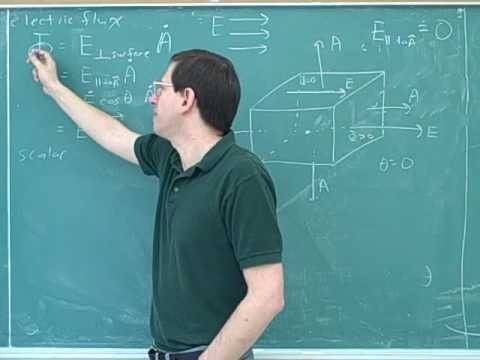 Physics: Electric field lines and Gauss's law (5)