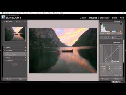 Using Tone Curves in Lightroom