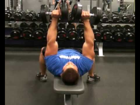 Chest Press Flat Bench DB Front : BeYourTrainer.com