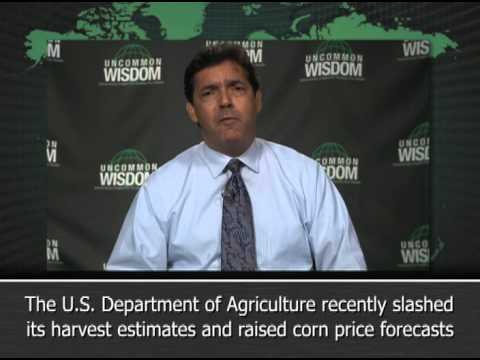 Could Brazilian Corn Fill U.S. Silos This Fall?