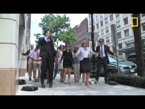 Let's Jump: Businesspeople