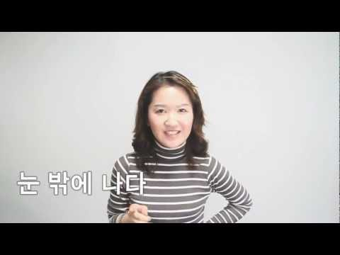 Korean Idiomatic Expressions - 눈 밖에 나다