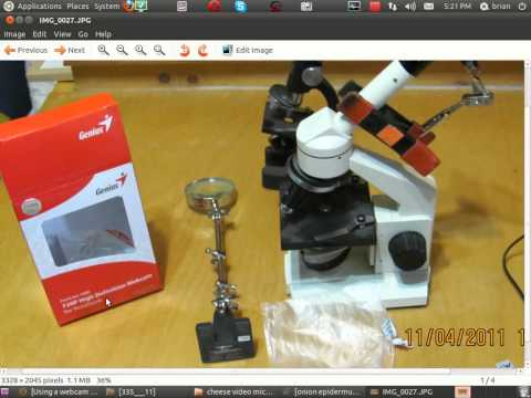 Do it yourself!  Cheap Webcam video  from an optical microscope!