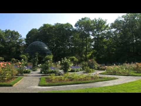 Autumn in the Peggy Rockefeller Rose Garden