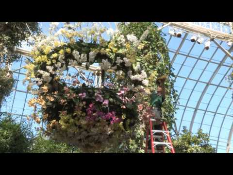 Setting Up The Orchid Show: On Broadway