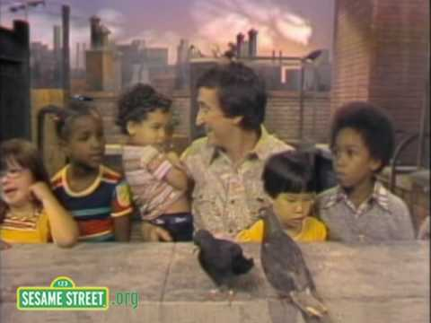 Sesame Street: Lazy Summer Day