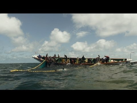 Senegal's Catch Of A Lifetime - multi language version