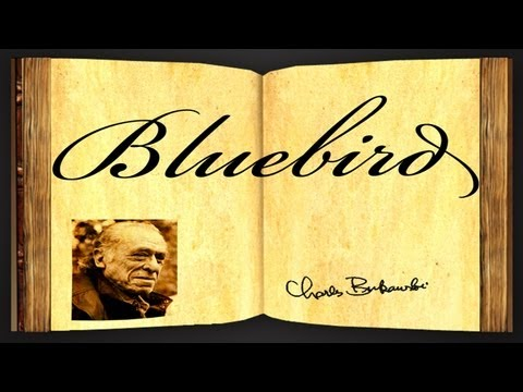 Pearls Of Wisdom - Bluebird by Charles Bukowski - Poetry Reading