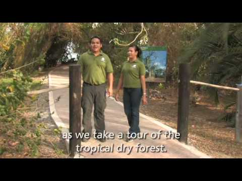Smithsonian Tropical Research Institute - Punta Culebra - Student Orientation Video