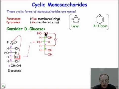 Monosaccharide Chemistry and Cyclic Sugars