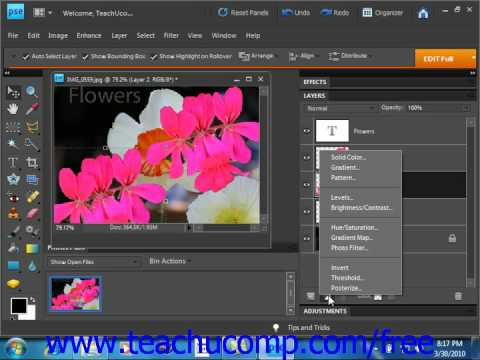 Photoshop Elements 9.0 Tutorial Adjustment Layers & Fill Layers Adobe Training Lesson 10.10