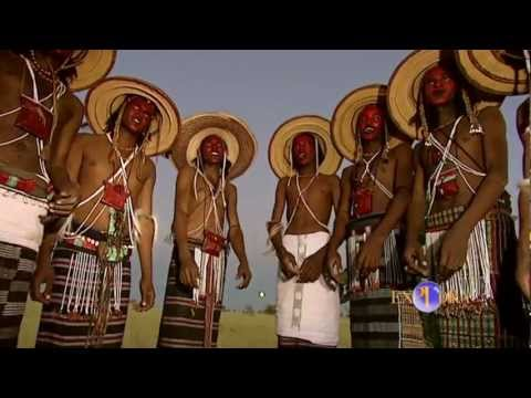 THE BOROROS FROM NIGER (MAGIC AND BEHAVIOUR)