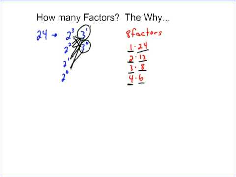 Number of Factors- They Why...