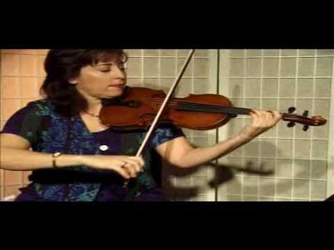 "Violin Lesson - Song Demonstration - ""Ode To Joy"" Pt. II"
