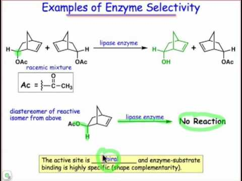 Substrate Specificity