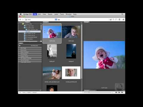 Photoshop: White balancing in Adobe Camera Raw   lynda.com