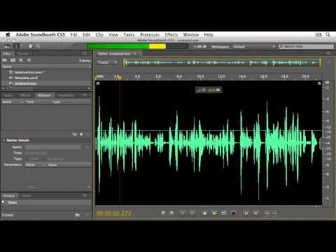 Soundbooth cs5  TOOLS & TIPS FOR A BETTER WORKFLOW: Adding Flash® Cue Point Markers
