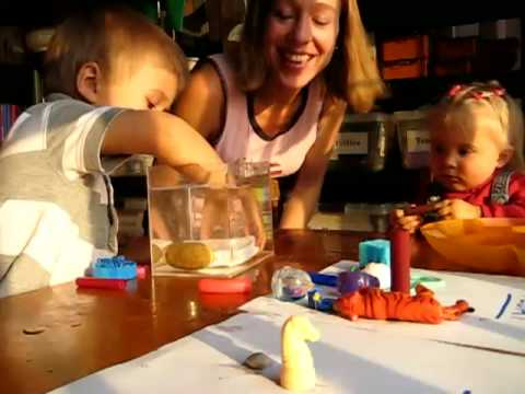 Preschool - Science. sink and float