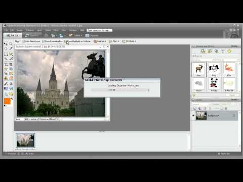 Total Training for Adobe Photoshop Elements 5  Ch 2 L8 Sharing Photos Online