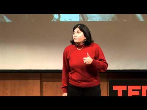 TEDxAshokaU 2011 - Maya Ajmera: Breaking Down the Walls