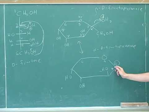 Organic chemistry: Carbohydrates (5)