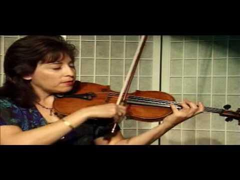 Violin Lesson - Vibrato Examples