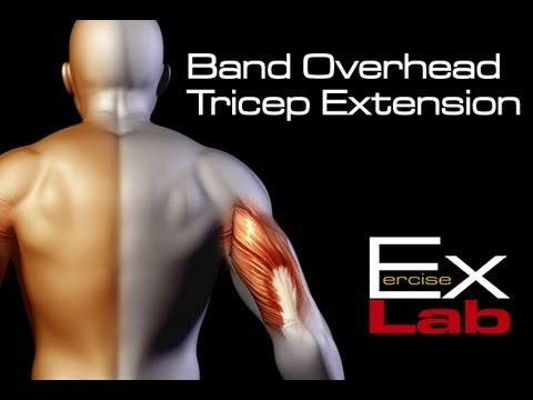 Tricep Extension ( Overhead with Exercise Band ) : Best Tricep Exercises