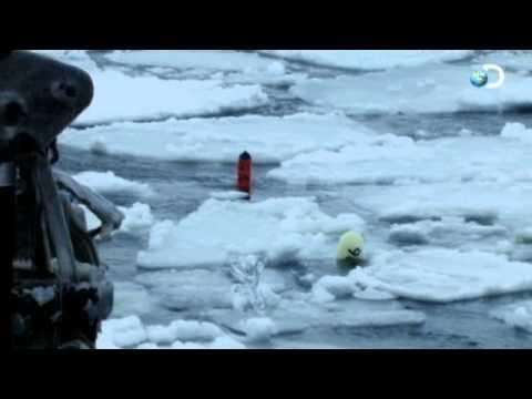 Skanky Crabs | Deadliest Catch