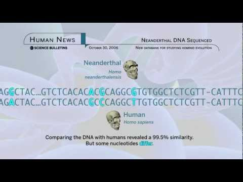 Science Bulletins: Neanderthal DNA Sequenced
