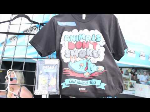 Warped Tour Randomness, Warped Tour pt. 3