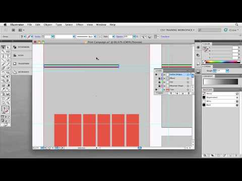 Adobe Illustrator CS5 Chapter 4: OBJECT EDITING ESSENTIALS  Free Transforming