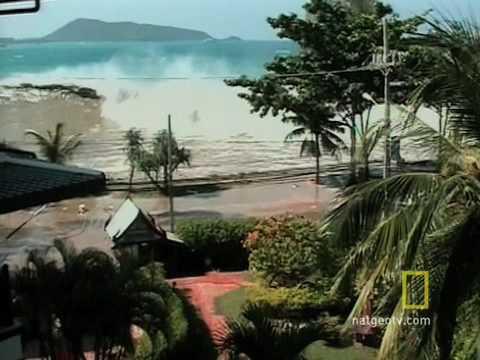 Tsunami Witness