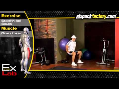 Ball Squat : Best Leg Exercises ( Quadriceps Exercises )