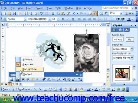 Word 2003 Tutorial The Picture Toolbar Microsoft Office Training Lesson 13.5