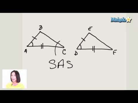 Properties of Triangle Congruence