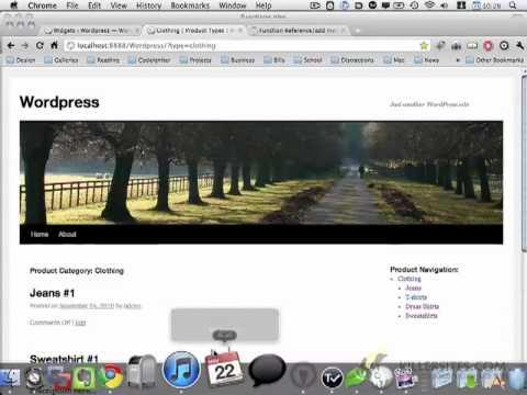 Wordpress Basics - Custom Post Types in Wordpress Part 5