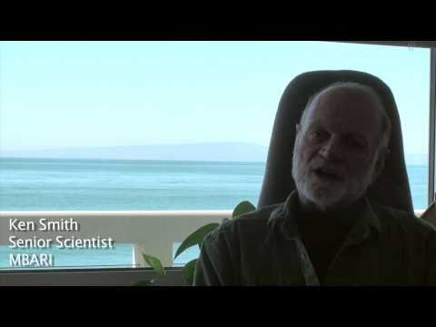 Ken Smith, goals for the Sargasso Sea Expedition 2011