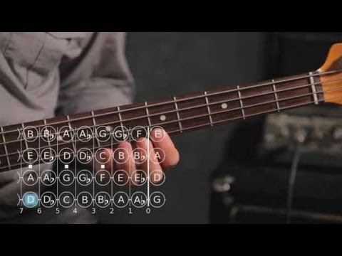 Bass Scales: How to Play the D Minor Scale