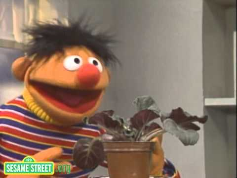 Sesame Street: Little Plant Song With Ernie