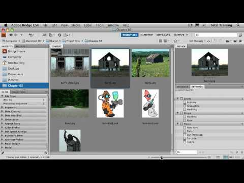 Adobe Photoshop CS4 Essentials Image and File Properties - Find Dimensions For an Image
