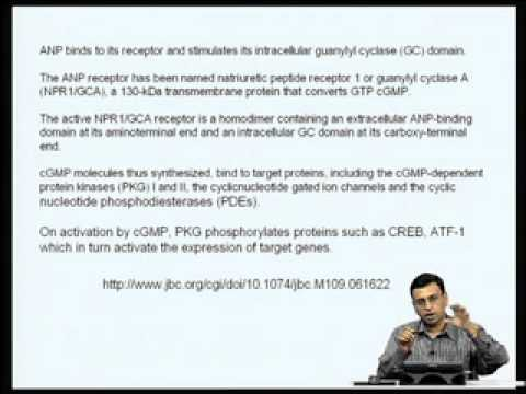 Mod-05 Lec-17 Regulation of gene expression by second messengers other than cAMP