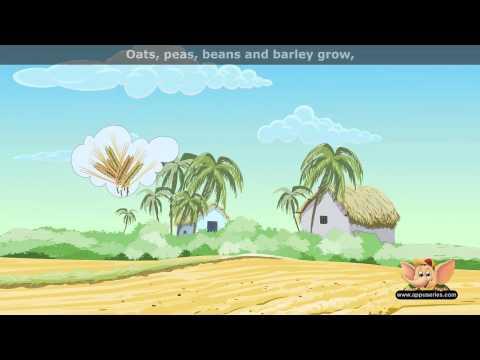 Oats Peas Beans Barely - Nursery Rhyme with Lyrics (HD)