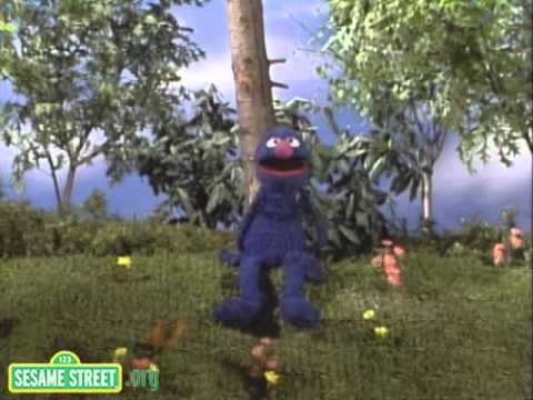 Sesame Street: Grover and the Butterfly