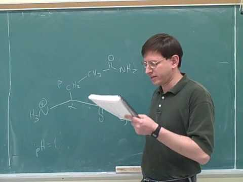 Organic chemistry: Amino acids and peptides (7)