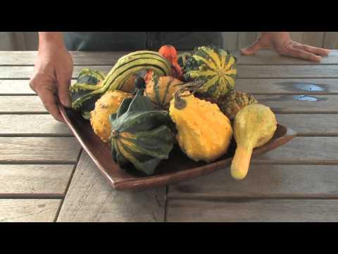 Sonia's Garden — Easy Autumn Centerpieces
