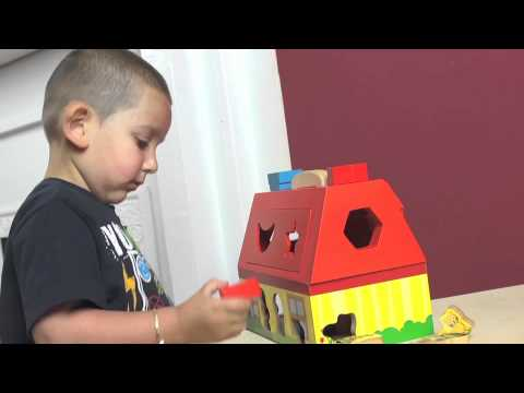 PBS KIDS Toys Educational Benefits: Take-Along Shape Sorting House