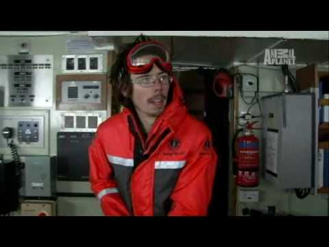 Whale Wars: Meet Peter Hammarstedt