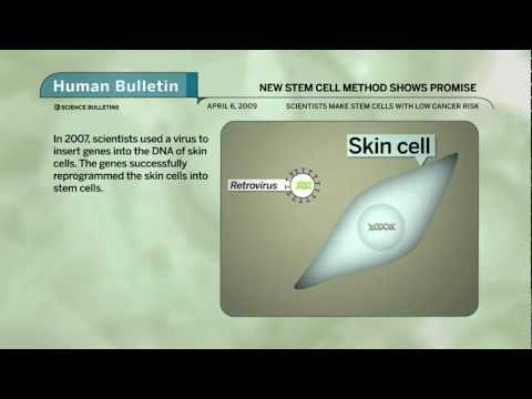 Science Bulletins: New Stem Cell Method Shows Promise